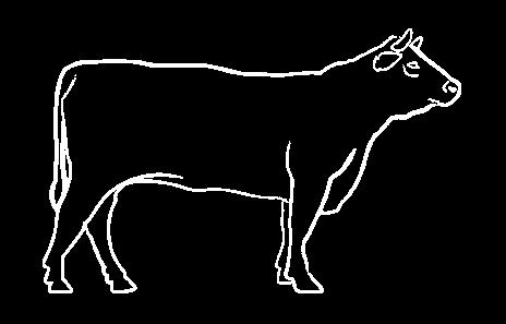 Juneće sveže meso